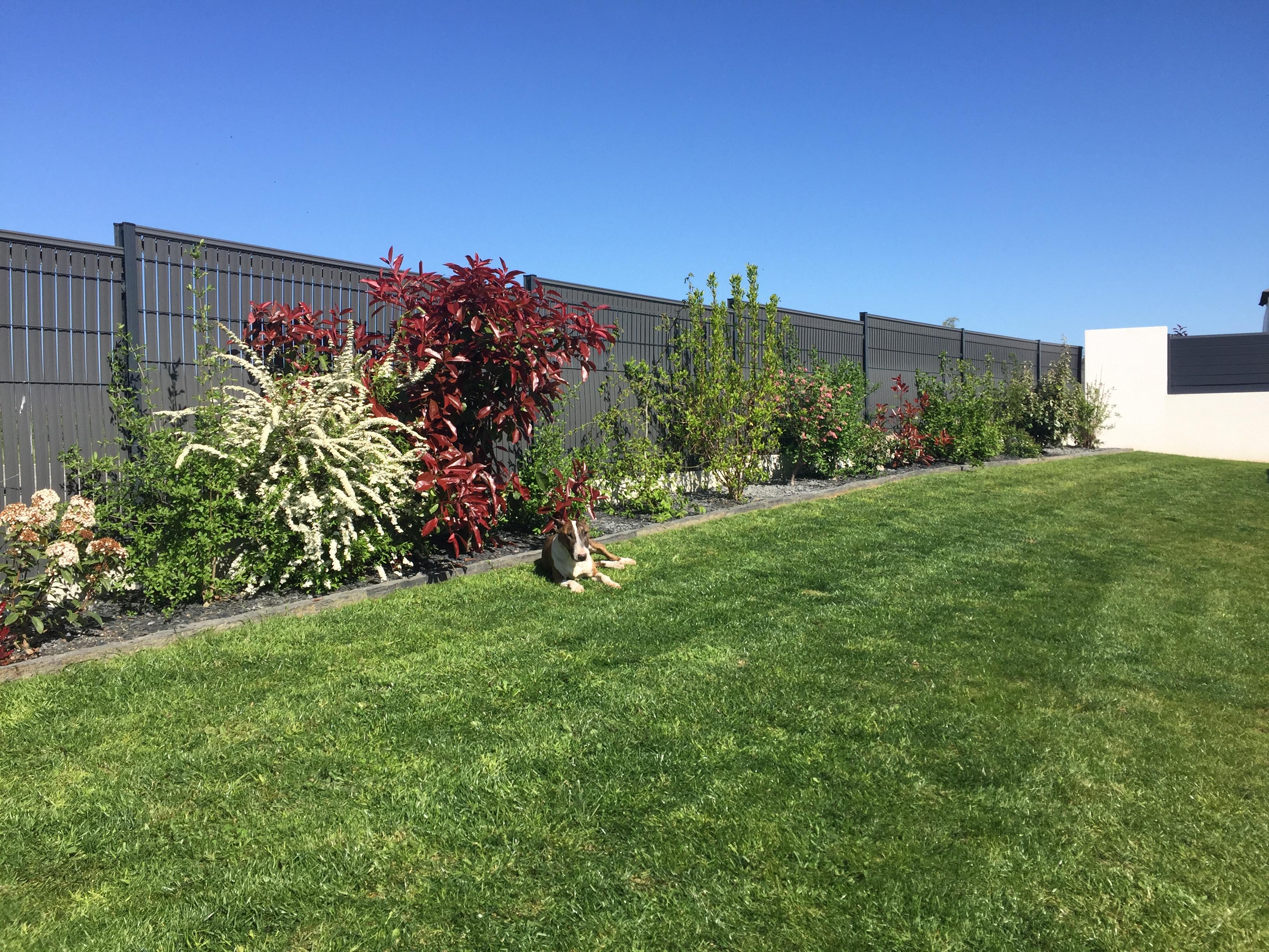 Arbuste Brise Vue Terrasse clôture anthracite   un coloris discret mais tendance